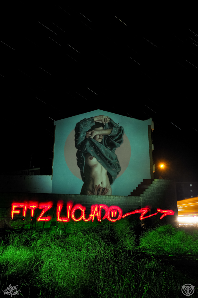 FITZ LICUADO. ARTAERORAP. LA BAÑEZA. DKL&SFHIR 2018